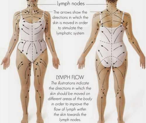 Линии массажа на теле человека